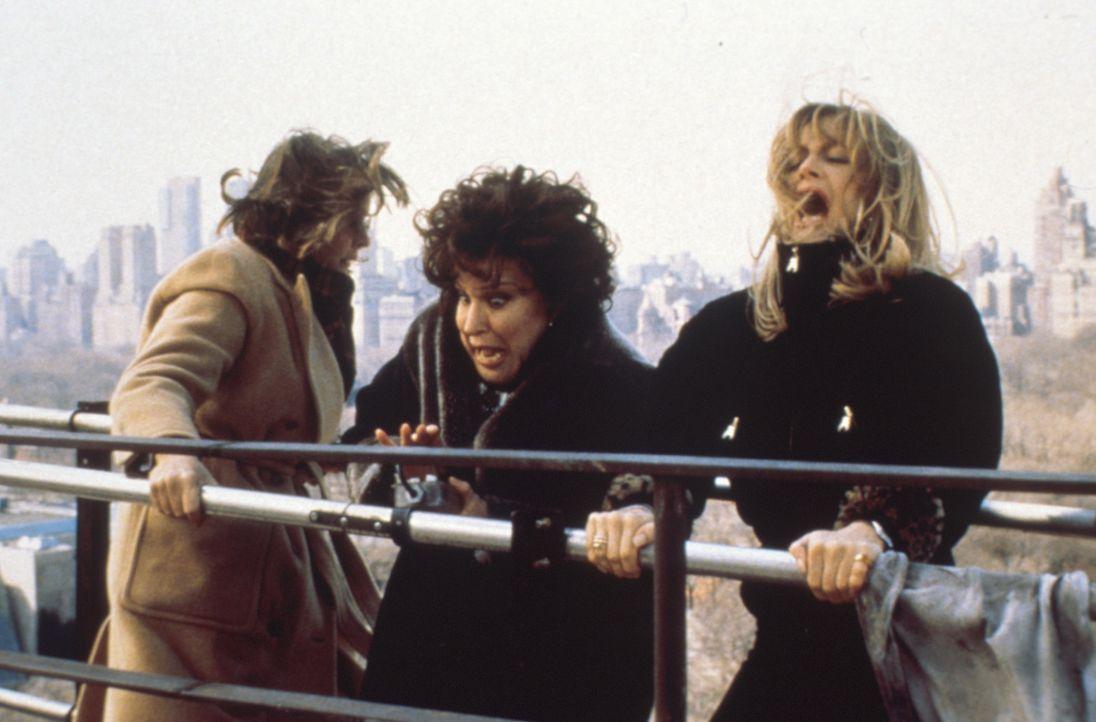 Ihr kreativer Rachefeldzug macht Brenda (Bette Midler, M.), Elise (Goldie Hawn, r.) und Annie (Diane Keaton, l.) viel Freude ... - Bildquelle: Paramount Pictures