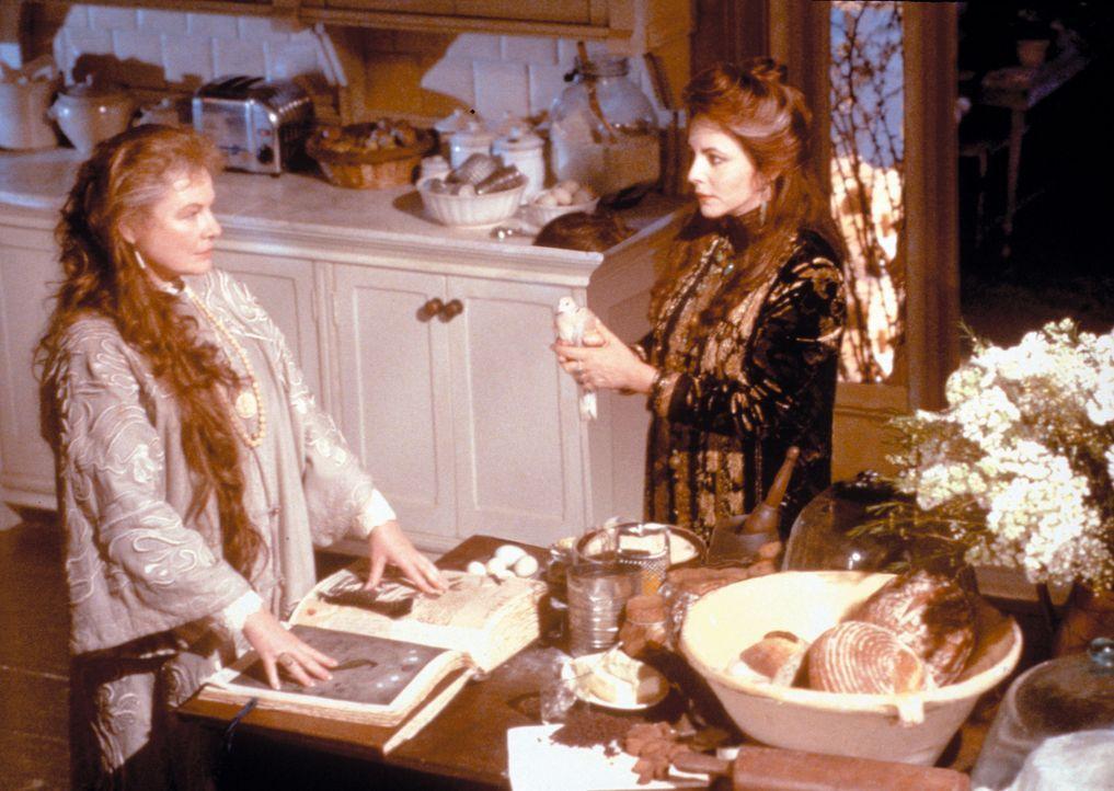 Sally und Gillian sind ziemlich verhexte Schwestern. Als Töchter einer alten Hexenfamilie wachsen sie im Haus ihrer beiden Tanten (Dianne Wiest r.... - Bildquelle: Warner Brothers