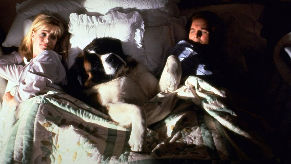 Ein Hund namens Beethoven - Bildquelle: 1991 NBCUniversal ALL RIGHTS RESERVED.