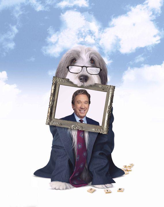 Durch einen Zufall wird Dave von dem Hirtenhund Shaggy gebissen - mit fatalen Folgen ... - Bildquelle: Disney Enterprises, Inc. All rights reserved