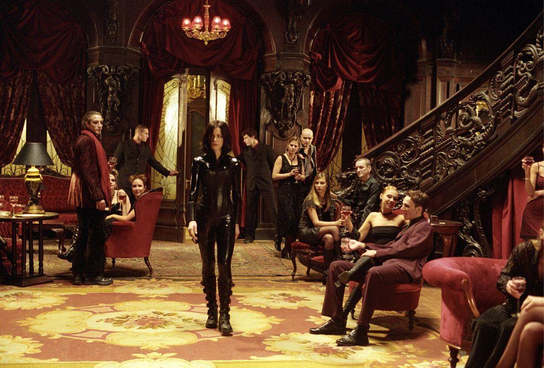 Noch ahnt Vampir-Lady Selene (Kate Beckinsale, M.) nicht, dass nicht alle Vampire und Werwölfe das sind, was sie vorgeben, zu sein ... - Bildquelle: 2003 Lakeshore Entertainment Group LLC. All Rights Reserved.