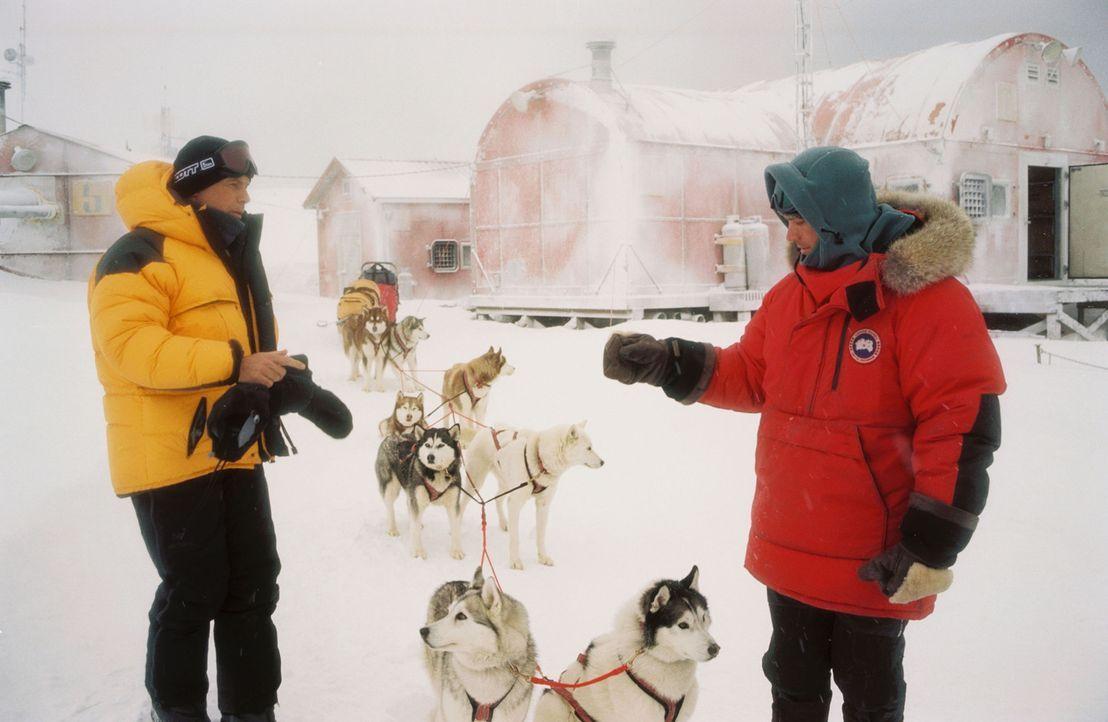 Eine Forschungs-Station in der unwirtlichen Antarktis: Eines Tages trifft mit dem Hubschrauber der arrogante Geologe Davis McClaren (Bruce Greenwood... - Bildquelle: Chris Large Walt Disney Pictures. All rights reserved.