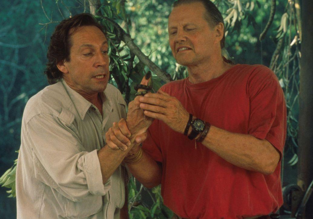 Warren Westridge (Jonathan Hyde, l.) sorgt sich um die Minischlange an seinem Finger, doch Experte Sarone (Jon Voight, r.) beruhigt ihn: Noch ist es... - Bildquelle: Columbia TriStar