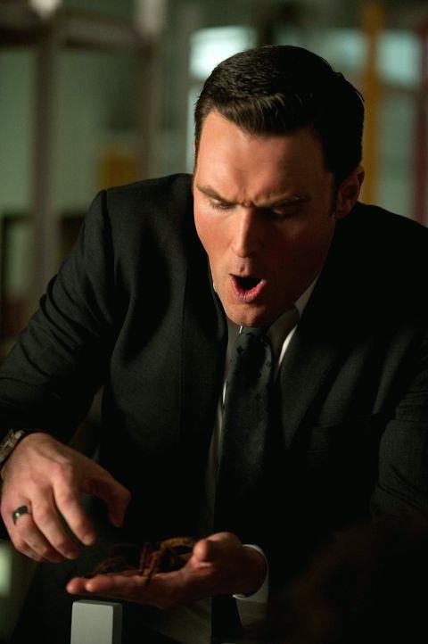 Ein neuer Mordfall beschäftigt Wayne (Owain Yeoman) ... - Bildquelle: Warner Bros. Television