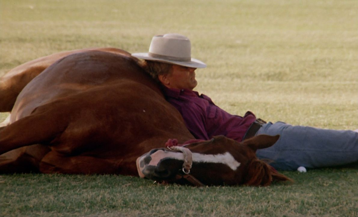 Einzelgänger Luke (Terence Hill) kann eigentlich nur die Gesellschaft seines Pferdes Joe ertragen. Doch eines Tages bittet ihn sein Freund Moose, se... - Bildquelle: PALOMA FILM Srl - CINECITTÁ - 1987