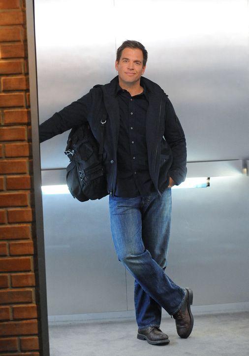 Ein neuer Fall wartet auf Tony (Michel Weatherly) und seine Kollegen ... - Bildquelle: CBS Television