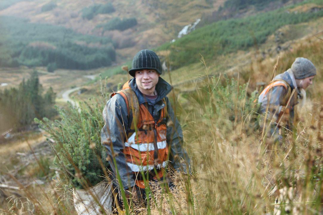 In Schottland versucht der verschuldete Ex-Junkie Jeremy einen Neustart. Bei Wind und Wetter muss er in den Wäldern Schottlands Bäume pflanzen ... - Bildquelle: kabel eins