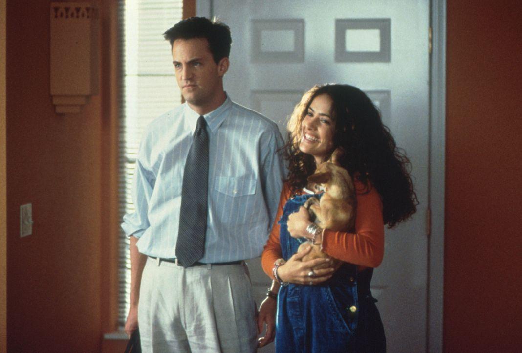 Als Isabel (Salma Hayek, r.) ihren Eltern Alex (Matthew Perry, l.) präsentiert, hält sich die Begeisterung  über deren zukünftigen Schwiegersohn... - Bildquelle: Columbia Tri-Star
