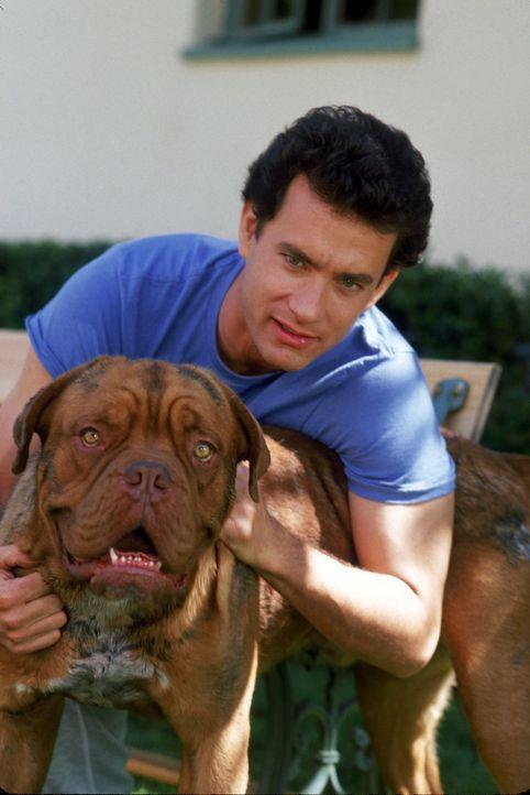 Trotz einiger Anlaufschwierigkeiten, sind Polizist Scott (Tom Hanks, r.) und Dogge Huutsch (l.) gute Freunde geworden ... - Bildquelle: Touchstone Pictures