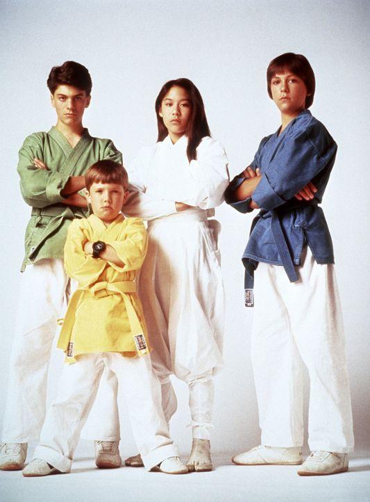 Die drei Ninjas Rocky (Sean Fox, l.), Tum Tum (Evan Bonifant, vorne M.), Colt (Max Elliott Slade, r.) und ihre japanische Mitstreiterin Miyo (Caroli... - Bildquelle: Columbia TriStar