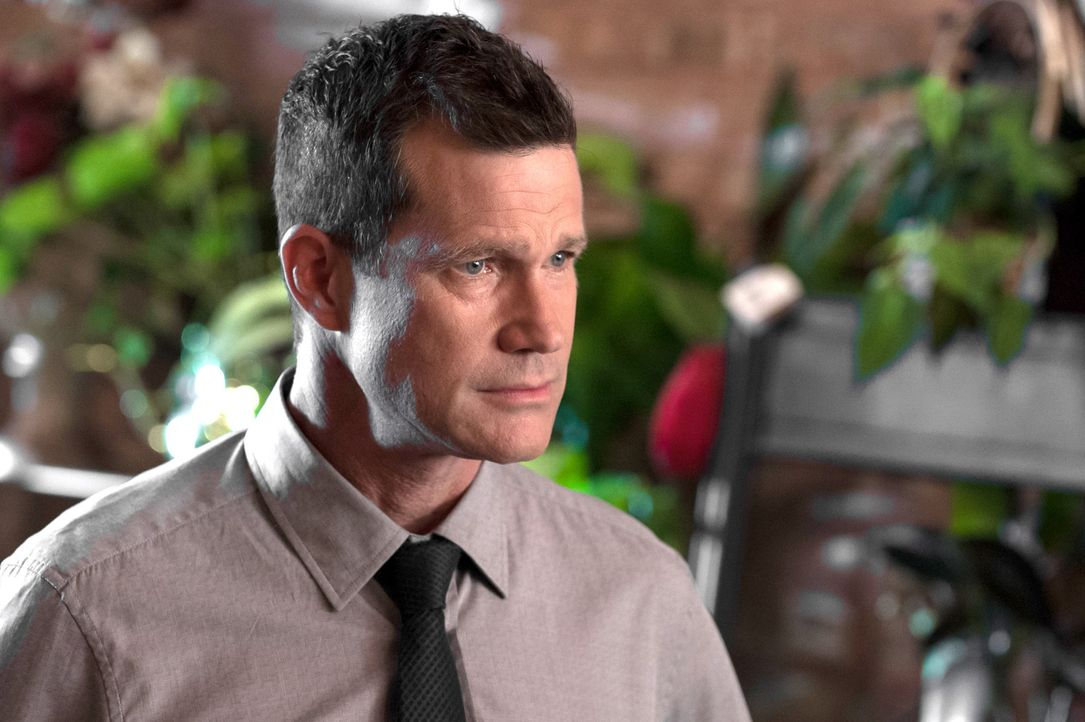 Sagt Verbrechern den Kampf an: Detective Al Burns (Dylan Walsh) ... - Bildquelle: 2013 Sony Pictures Television Inc. All Rights Reserved.