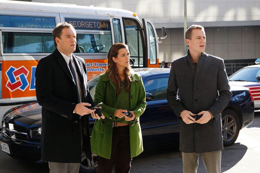 Ermitteln in einem neuen Fall: McGee (Sean Murray, r.), Ziva (Cote de Pablo, M.) und Tony (Michael Weatherly, l.) ... - Bildquelle: CBS Television