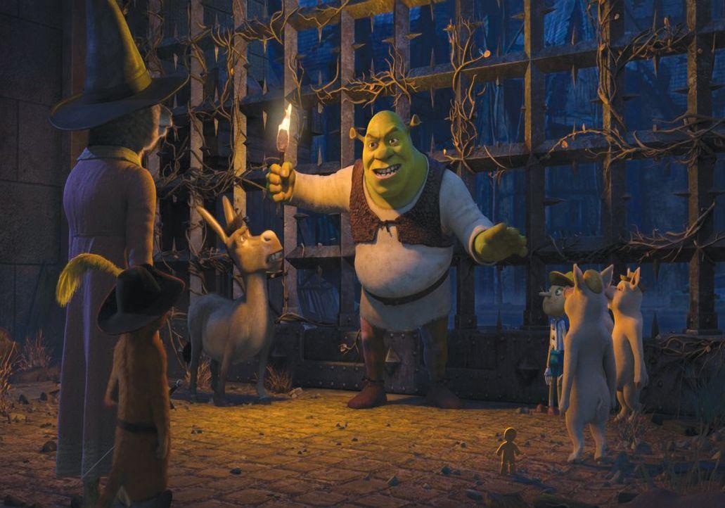 Treten zu einem Gruselgeschichten-Wettbewerb an, der auf Lord Farquaads verlassenem Spukschloss Duloc stattfinden soll: Shrek (M.) und seine Freunde... - Bildquelle: 2010 DreamWorks Animation LLC. All Rights Reserved.