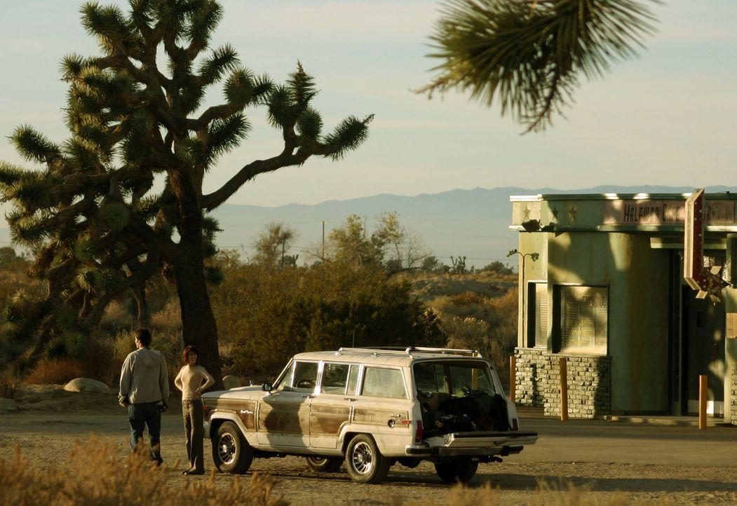 Vier Studenten (v.l.n.r.: Devon Gummersall, Tina Payne) sind zu einer Party in der Wüste Nevadas unterwegs. Als ihr Auto an einem verlassenen Motel... - Bildquelle: Telepool