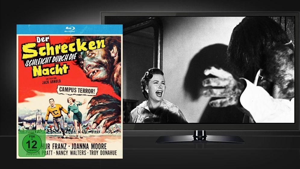 Der Schrecken schleicht durch die Nacht (Blu-ray) - Bildquelle: Koch Media