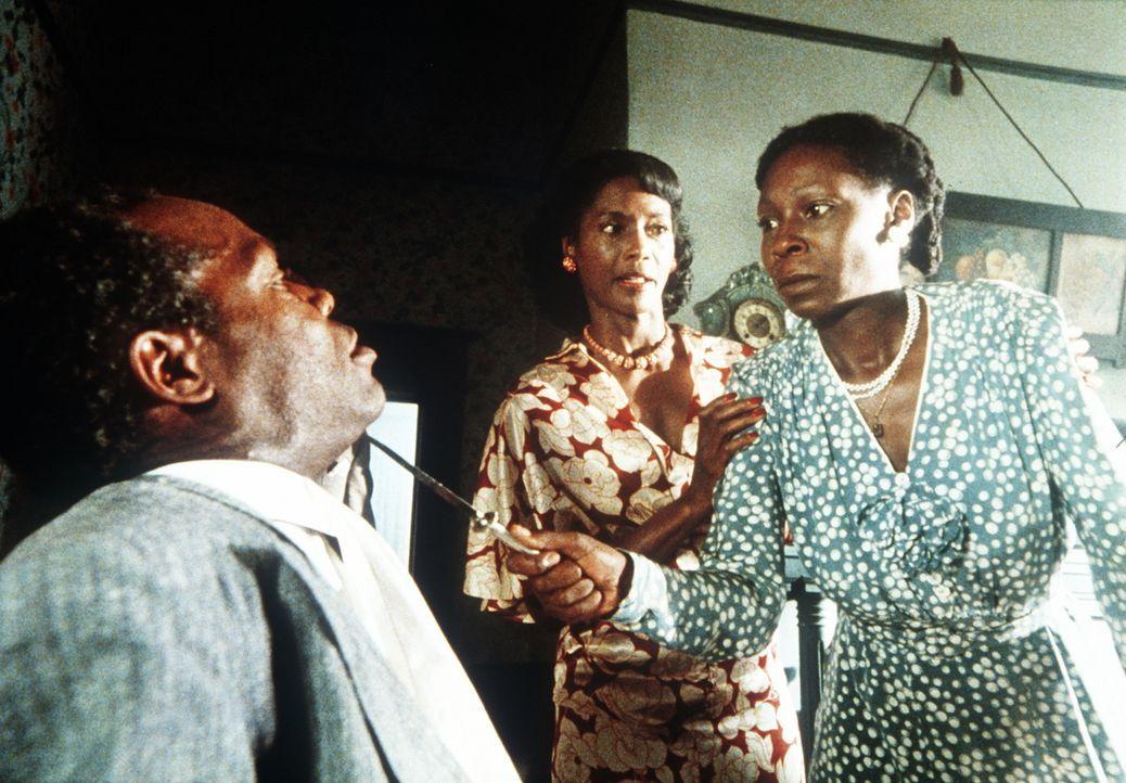 In letzter Sekunde kann Shug (Margaret Avery, M.) die völlig aufgebrachte Celie (Whoopi Goldberg, r.) davor abhalten, sich mit Gewalt an Albert (Dan... - Bildquelle: Warner Bros.