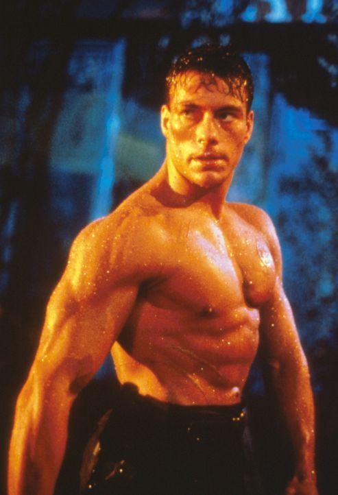 In der post-apokalyptischen Zukunft versucht der Einzelgänger Gibson (Jean-Claud Van Damme),  die verbliebende Menschheit vor einem brutalen 'Pirat...