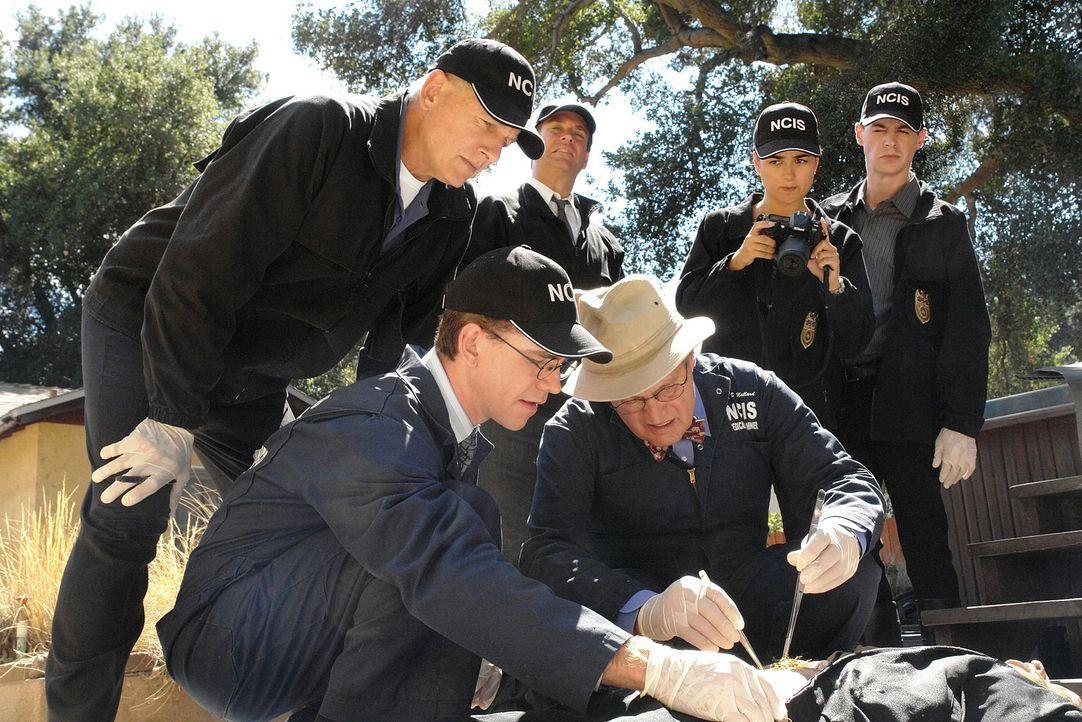 Petty Officer Bick wird tot aufgefunden. Er wurde ertränkt und sein Bauch ist aufgeschlitzt worden. Zudem wurde auf ihn geschossen und er hat einen... - Bildquelle: CBS Television