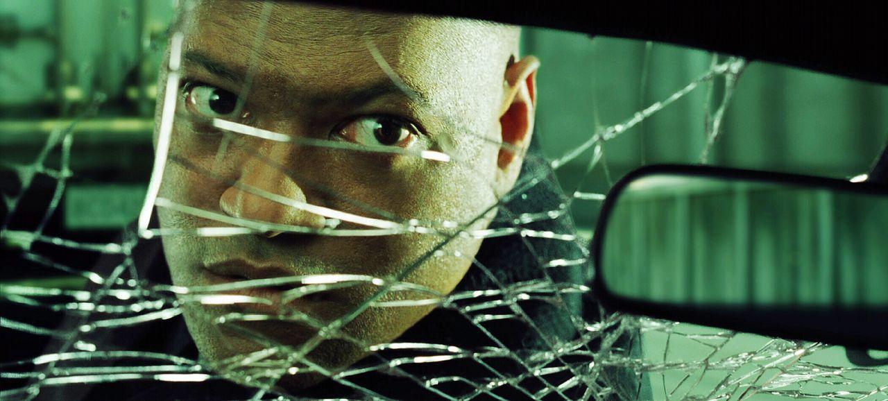Will partout seinen Verstand behalten: Morpheus (Laurence Fishburne) ... - Bildquelle: Warner Bros.