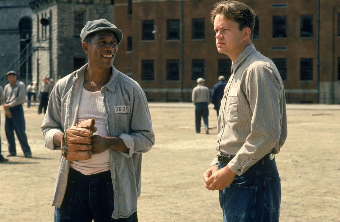 1947 wandert der unschuldige Andy Dufresne (Tim Robbins, r.) lebenslang hinter Gitter. Im Gefängnis freundet er sich mit Red (Morgan Freeman, l.) an... - Bildquelle: 1994 Warner Bros. Entertainment Inc. All Rights Reserved.