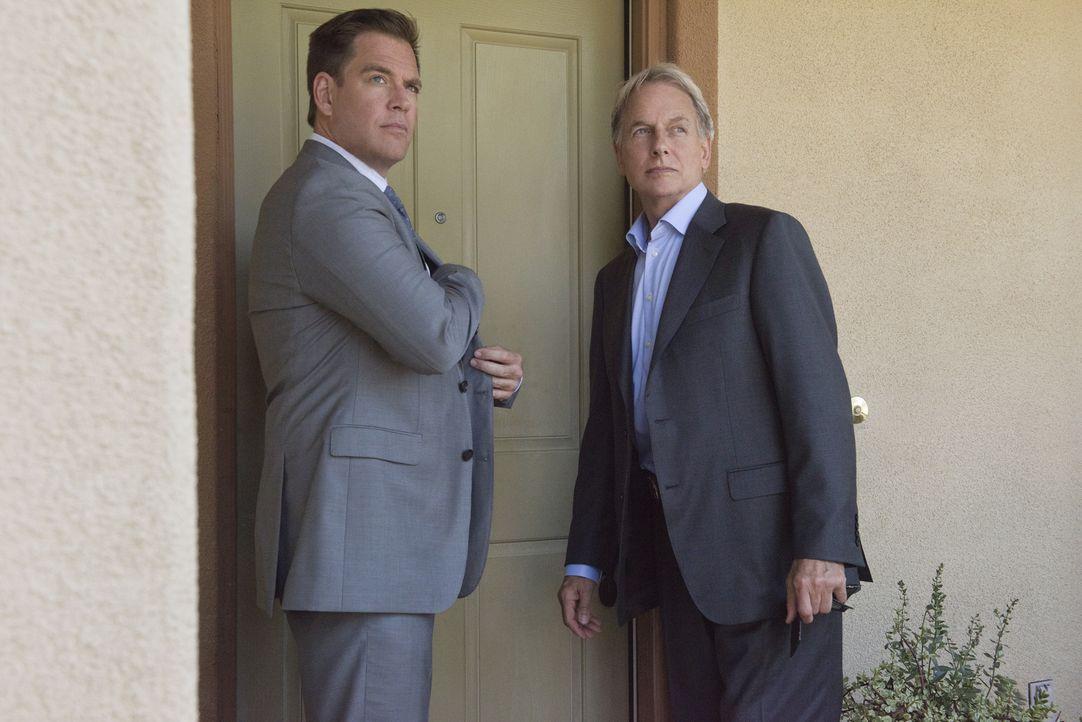 Ein neuer Fall wartet auf DiNozzo (Michael Weatherly, l.) und Gibbs (Mark Harmon, r.) ... - Bildquelle: Colleen Hayes CBS Television / Colleen Hayes