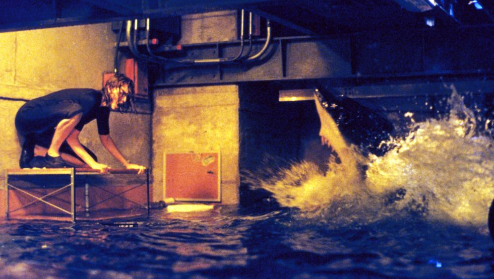 Deep Blue Sea - Bildquelle: Warner Bros. Pictures