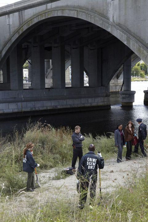 Als Hand und Fuß einer zerstückelten Leiche auf einem Feldweg gefunden werden, müssen Megan (Dana Delany, 2.v.r.), Peter (Nicholas Bishop, 2.v.l.) u... - Bildquelle: ABC Studios