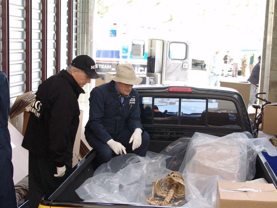 Als der Lagerraum eines im Irak gestorben Mannes geöffnet wird, findet man darin eine Leiche eines Mädchens. Gibbs (Mark Harmon, l.) und Ducky (Davi... - Bildquelle: CBS Television