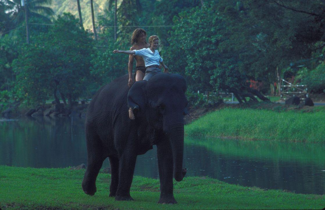 Als die Karrieristin Ursula Stanhope (Leslie Mann, r.) im Dschungel von dem Urwaldbewohner George (Brendan Fraser, l.) vor hungrigen Löwen gerettet... - Bildquelle: Disney Enterprises Inc.