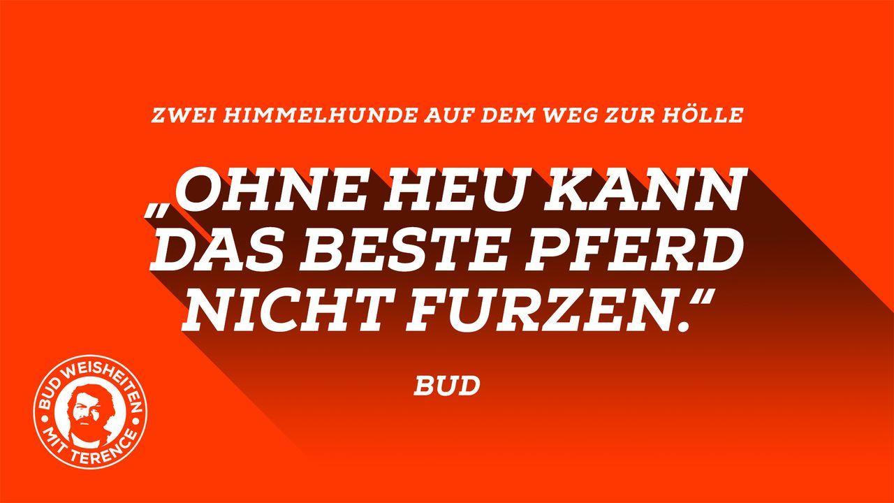 Bud-Weisheiten mit Terence 4