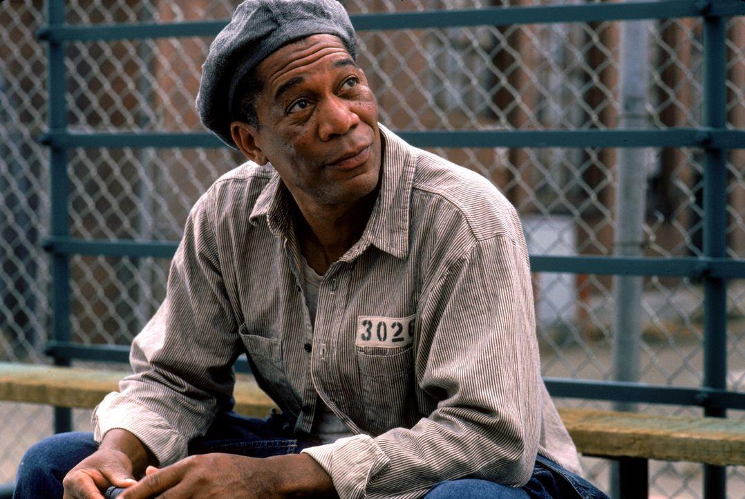 Während seiner langjährigen Haft hat Red (Morgan Freeman) schon viel erlebt - doch als er Andy trifft, verändert sich der Gefängnisalltag für ihn sc... - Bildquelle: 1994 Warner Bros. Entertainment Inc. All Rights Reserved.