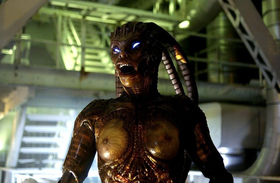 Eine ganze Horde von Alien-Mischlingen will unbedingt an Sara perfekten Organismus ran, denn sie leidet an einem tödlichen Immundefekt ... - Bildquelle: 2007 MGM International Television Distribution