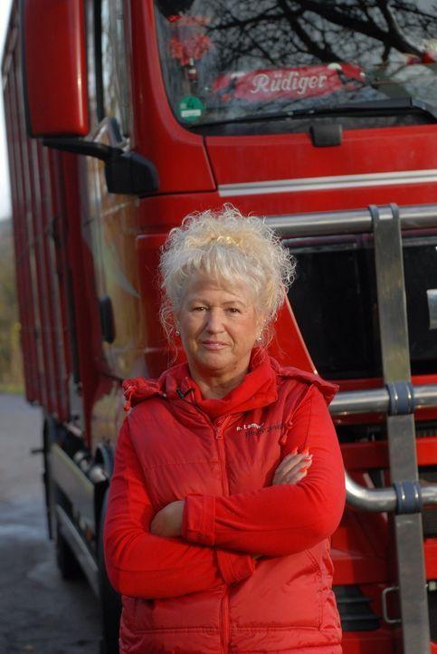 """""""Schlager-Lady"""" Bettina Lammer aus Absteinach in Hessen ist neu in der Trucker Babe-Runde und sorgt gleich für Aufregung. Sie transportiert Kälber,... - Bildquelle: kabel eins"""