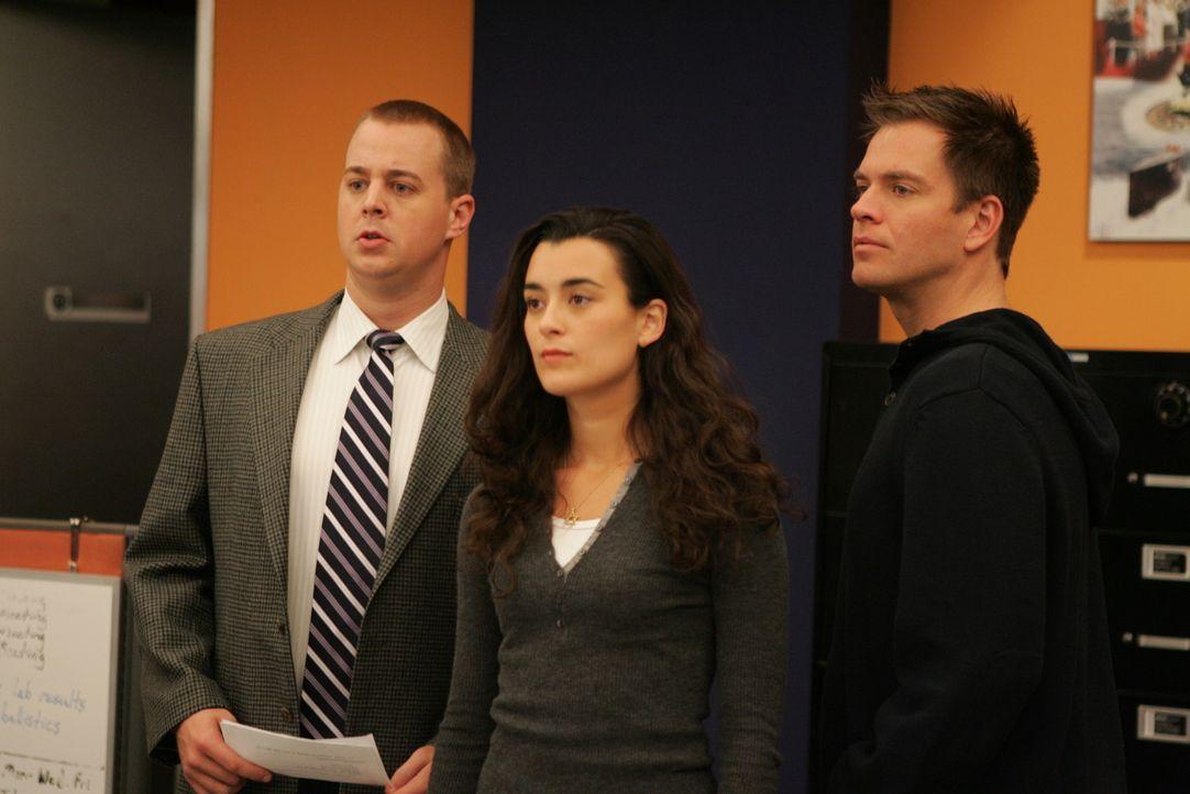 Ein neuer Fall bereitet ihnen Kopfzerbrechen: McGee (Sean Murray, l.), DiNozzo (Michael Weatherly, r.) und Ziva (Cote de Pablo, M.) ... - Bildquelle: CBS Television