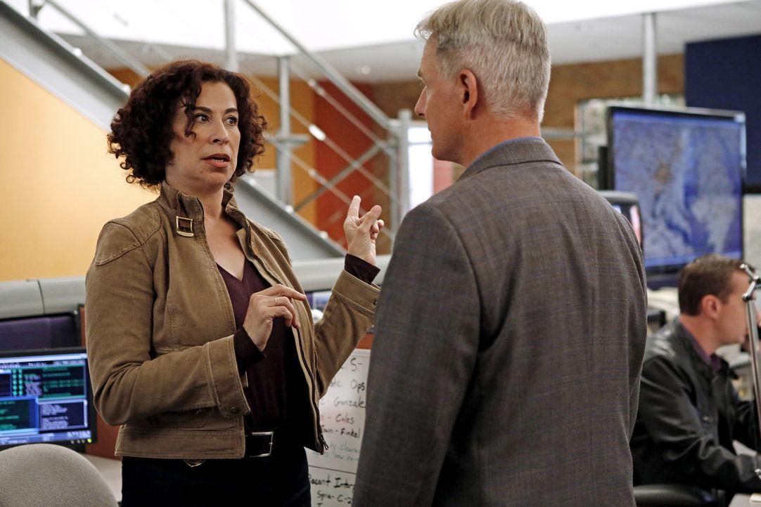 Ein neuer Fall beschäftigt NCIS Special Agent Vera Strickland (Roma Maffia, l.) und Gibbs (Mark Harmon, r.) ... - Bildquelle: CBS Television