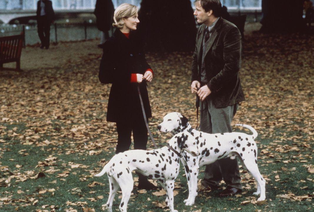 Offensichtlich finden nicht nur die Hunde Pongo und Perdy Gefallen aneinander, sondern auch ihre Besitzer Roger (Jeff Daniels, r.) und Anita (Joely... - Bildquelle: Buena Vista Pictures