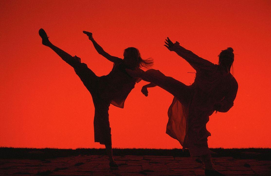 Die jahrelange, knochenharte Kung-Fu-Ausbildung bei Meister Pai Mei (Chia Hui Liu, r.) war für die Black Mamba (Uma Thurman, l.) durchaus lohnenswer... - Bildquelle: Miramax Films. All rights reserved