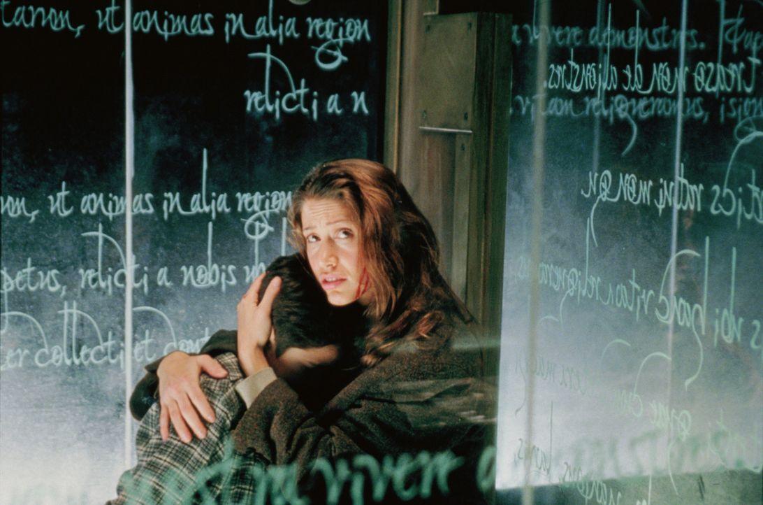 Auf der Flucht vor den Geistern: Kathy (Shannon Elizabeth, r.) und Bobby (Alec Roberts, l.) ... - Bildquelle: 2003 Sony Pictures Television International. All Rights Reserved.