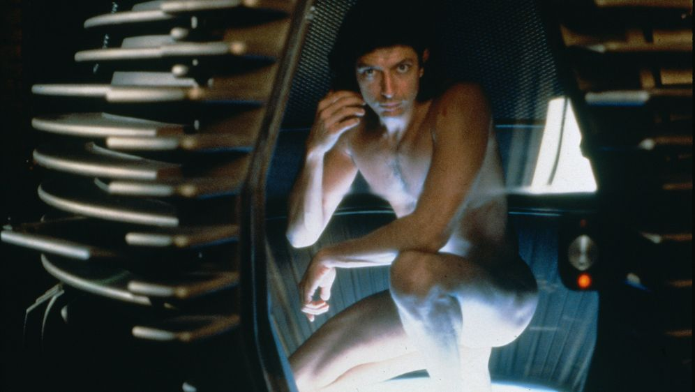 Die Fliege - Bildquelle: 1986 Twentieth Century Fox Film Corporation.  All rights reserved.