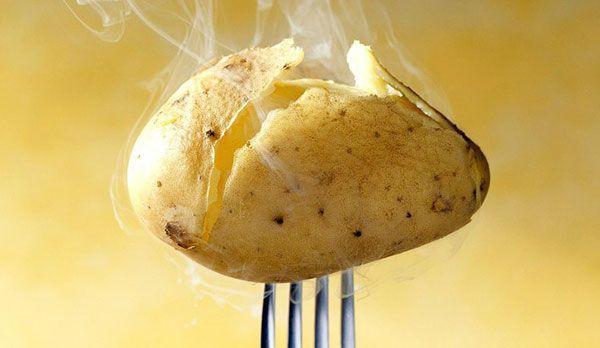 Kartoffeln machen dick - Bildquelle: dpa