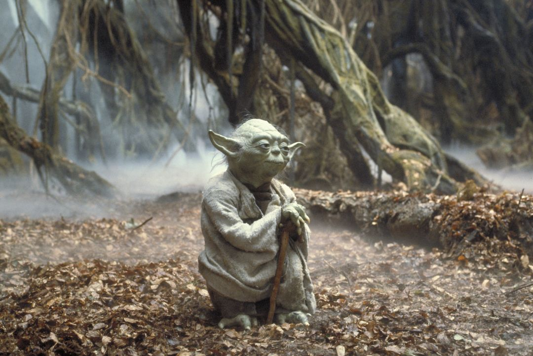Als wahrer Jedi- Ritter führt Yoda (Frank Oz) ein tugendsames Leben ohne Fehler und Makel ... - Bildquelle: TM & © 2015 Lucasfilm Ltd. All rights reserved. Used under authorization.