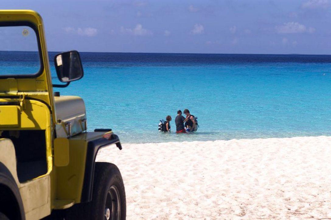 """Eine Idylle zum Träumen: """"Barsato Island"""". Doch das plötzliche Auftreten eines gefährlichen Virus, versetzt die Urlauber in Angst und Schrecken ... - Bildquelle: Regent Worldwide Sales LLC"""