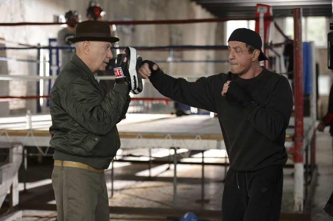 """Louis Conlon (Alan Arkin, l.) trainiert Henry """"Razor"""" Sharp (Sylvester Stallone, r.) für den alles entscheidenden Boxkampf gegen seinen alten Rivale... - Bildquelle: 2013 Warner Brothers"""