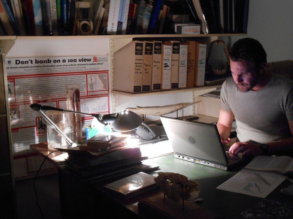 Meeresbiologe Collin Drake wertet die Ergebnisse der Nachforschungen aus, die er gemeinsam mit seinem Team nach einem verschollenen Fischerboot vor... - Bildquelle: Brian Girard / Kris Olson Discovery Channel