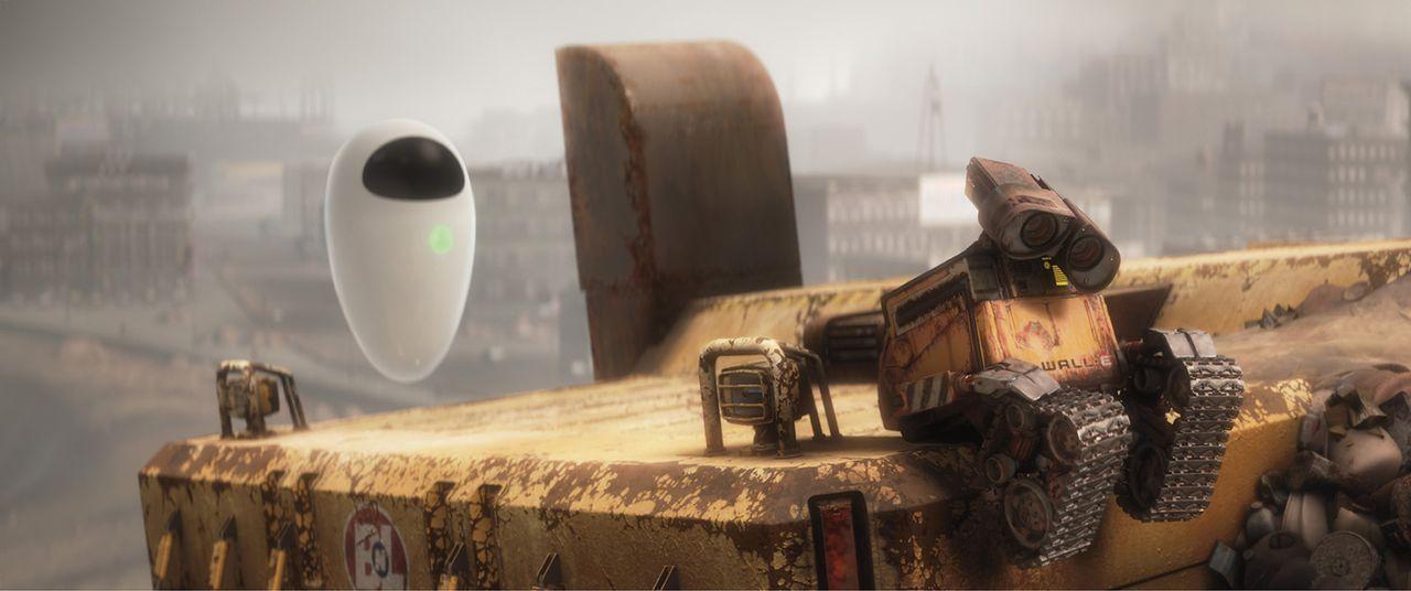 """Wall-E ist einsam. Er ist der einzig überlebende Roboter seines Typs. Als er ein Video des Films """"Hello Dolly"""" findet, entdeckt er seine wahre Best... - Bildquelle: Touchstone Pictures"""