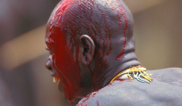 Blutiger Schädel - Bildquelle: Richard Gress
