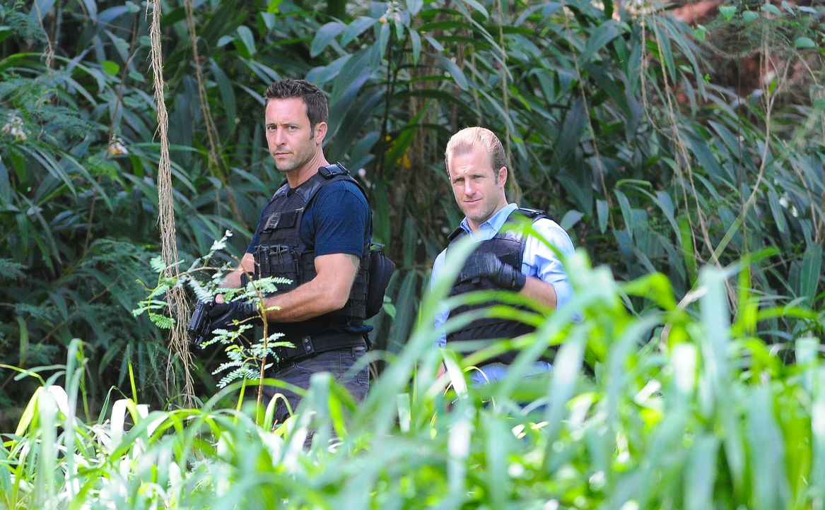 Eine chemische Explosion in einem Gefängnisbus sorgt dafür, dass sechs Häftlinge fliehen konnten. Steve (Alex O'Loughlin, l.), Danny (Scott Caan, r.... - Bildquelle: Norman Shapiro 2016 CBS Broadcasting, Inc. All Rights Reserved
