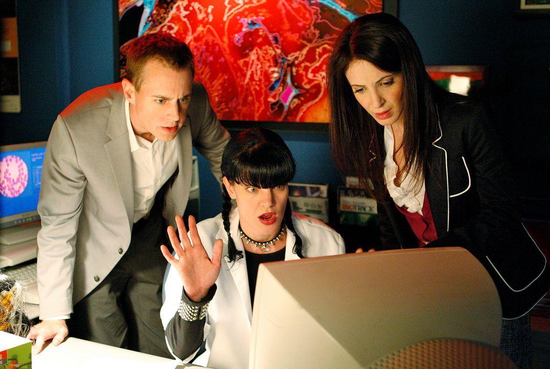 Ermitteln in einem neuen Mordfall: McGee (Sean Murray, l.) Abby (Pauley Perrette, M.) und Agent Susan Grady (Jackie Geary, r.) ... - Bildquelle: Cliff Lipson CBS Television