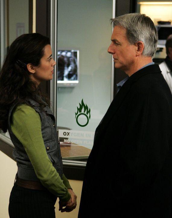Gibbs (Mark Harmon, r.) und Ziva (Cote de Pablo, l.) sich Sorgen um Lieutenant Roy Sanders, der an einer überhöhten Strahlendosis im Körper wohl ste... - Bildquelle: CBS Television