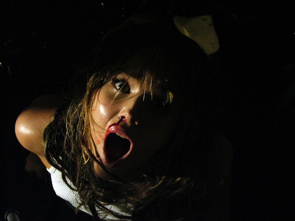 Nachdem ihr Auto den Geist aufgegeben hat, müssen vier Freunde (Arielle Kebbel) in einem einsamen Motel absteigen. Schon bald merken sie, dass mit d... - Bildquelle: Telepool